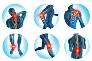 The services provided by physiotherapists